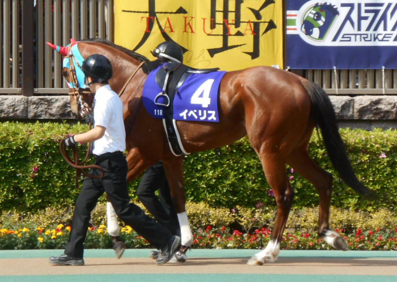 阪神牝馬ステークス2021予想・本命はイベリス