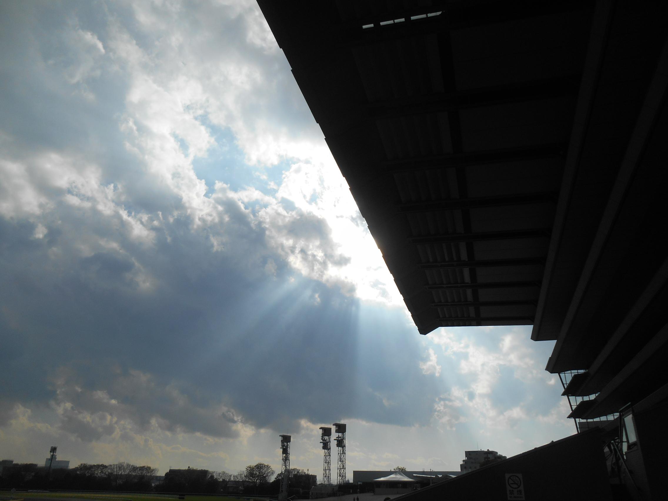 一日12レースのドラマ―競馬場の片隅で。